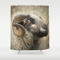 ram Shower Curtains featuring Ram by Pauline Fowler ( Polly470 )