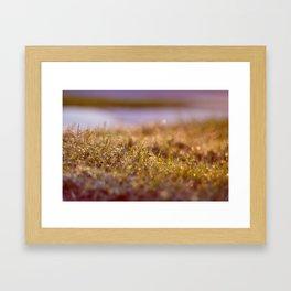 l'herbe Framed Art Print