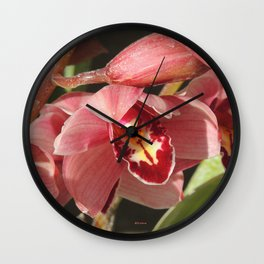 One Orchid on a Line Wall Clock