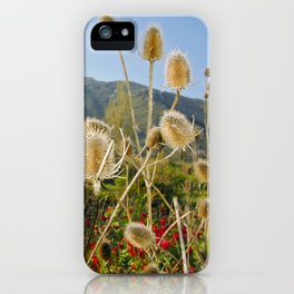 Meadow of Sicilian Spring iPhone Case