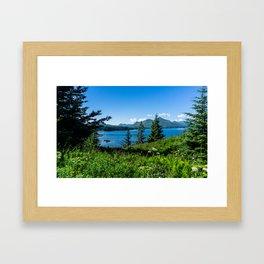 3 Trees-Wide Angle Framed Art Print