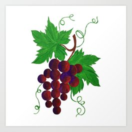 Purple Grapes on vine Art Print