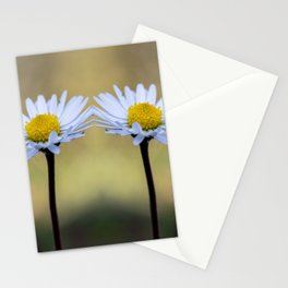 Mirroring delicate daisy flowers Stationery Cards