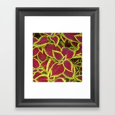 flower power II Framed Art Print