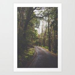 Tasmania | Cradle Mountain Road Art Print