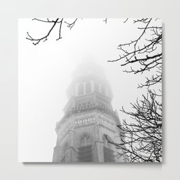 Hiding in the fog Metal Print