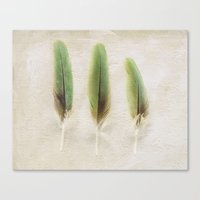 aelwen Canvas Prints featuring Green Feathers by Pure Nature Photos