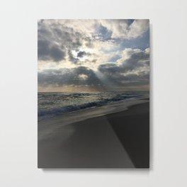 Natural Display  Metal Print