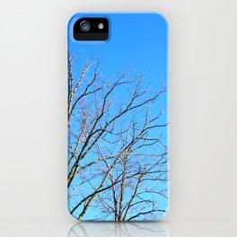 Winter iPhone Case