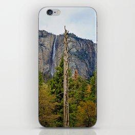 Tree In Yosemite iPhone Skin