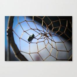 Catch my dreams... Canvas Print