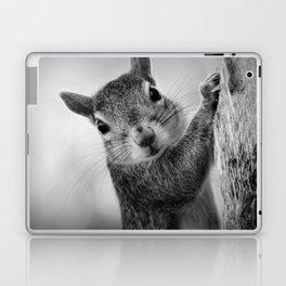 Staring Squirrel in Black and White Laptop & iPad Skin