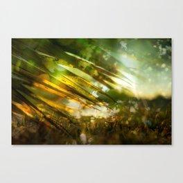 Transitory Utopia #11 Canvas Print