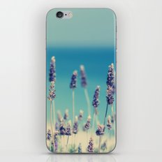 beach - lavender blues iPhone Skin