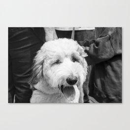 woolen Canvas Print