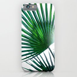 Palm Leaves 19 iPhone Case