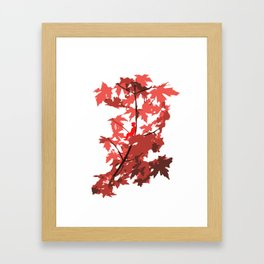 Tree Sitting Framed Art Print