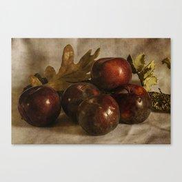 Still life #25 Canvas Print