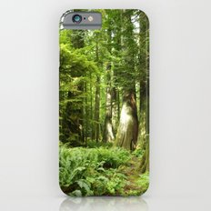 Cathedral Grove iPhone 6s Slim Case