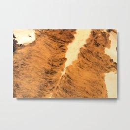Burnt Orange Texas Long Horn Animal Leather Pattern Metal Print