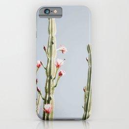 Cereus Cactus Blush iPhone Case