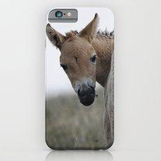 Baby Przewalski's Horse iPhone 6s Slim Case