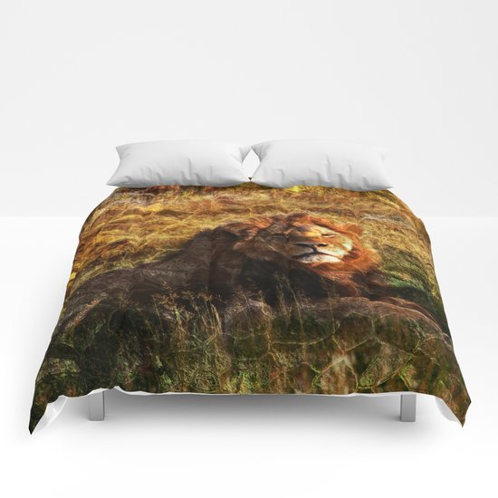 Cecil, the Lion Comforters