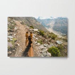 Horseback | Nature Landscape Mountain Photography During Hike in Peru Metal Print