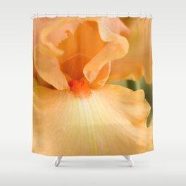 Bearded Iris Orange Harvest Shower Curtain