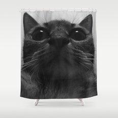 a cat Shower Curtain