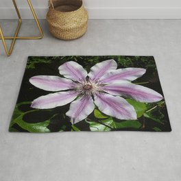 Clematis Nellie Moser Rug