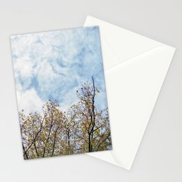 Autumn branches Stationery Cards