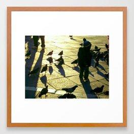 Boy with Pigeons, San Marco Framed Art Print