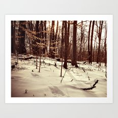 up the snowy hill Art Print