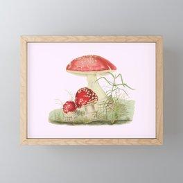 Agaricus Muscarius Framed Mini Art Print