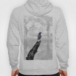 Crow On Misty Pond A114 Hoody
