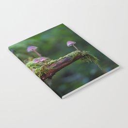 Cogumelo Notebook