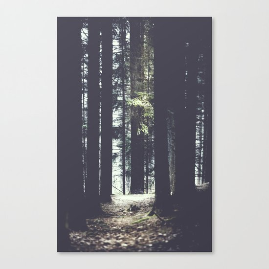She will guide you Canvas Print