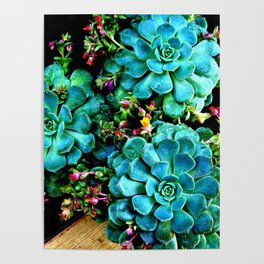 Beautiful Autumn plant green, blue Poster