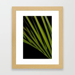 PlantArt1 Framed Art Print