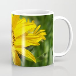 Yellow Flowering Bee picture Coffee Mug