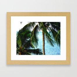 Islamorada. Florida Palms Framed Art Print