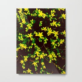 A Bunch of Tiny Yellow Star Flowers Metal Print