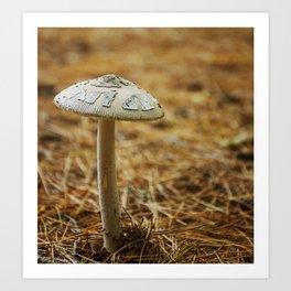Through the Pine Needles by Althéa Photo Art Print