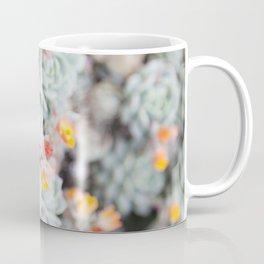 Echeveria 2  //  The Succulent & Cactus Series Coffee Mug