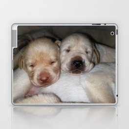 Little Polar Bears with yellow lab puppies Laptop & iPad Skin