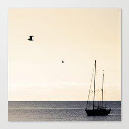 Junio Canvas Print