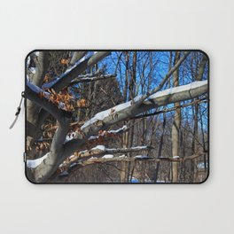 Branch Frosting Laptop Sleeve