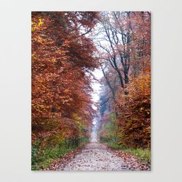 Walking in the Elm Canvas Print