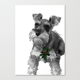 Christmas Schnauzer Canvas Print